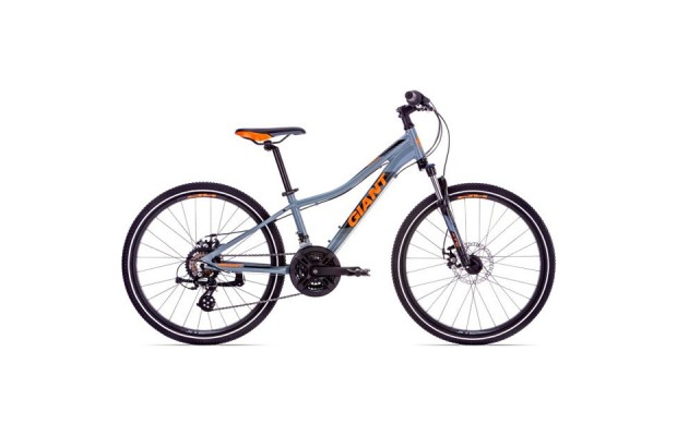 Велосипед Giant XtC Jr 24 Disc 1 2019